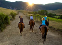 Family riding horses on a Southwest Montana Dude Ranch